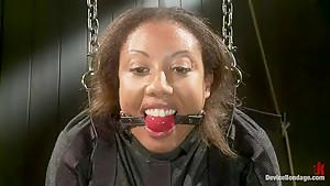 Pornstar gets wrecked in her first bondage shoot