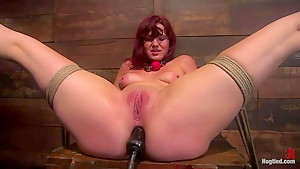 Kaydence is spread wide & fucked in the ass