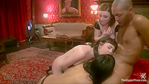 Cock Service Salon