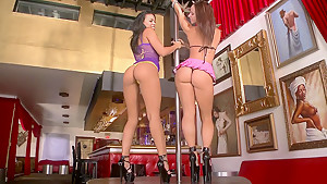 Two stripper Asses