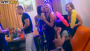 After party begins with nasty panda's blowjob