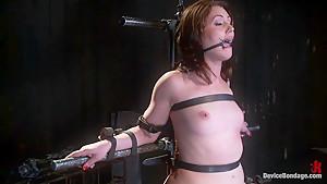 Sarah Shevon Suffers - Live Show Part 1